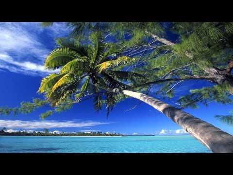 Download Audien - Palmetto Original Mix HD Mp4 baru