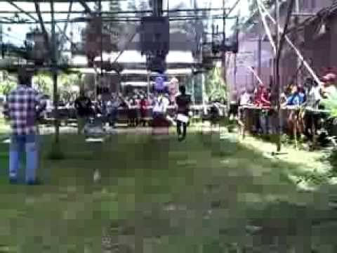 Lomba Burung  Murai Batu video