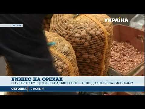 Украинцы организовали успешный бизнес на орехах