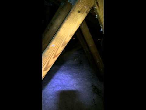Bradenton Florida attic blown in insulation# TLS ENERGY SAVERS