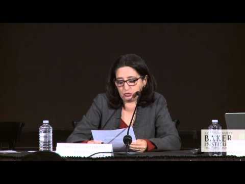 The Rule of Law and Mexico's Energy Reform 3