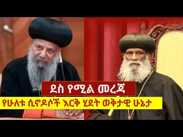 Ethiopian Holy Synod in Addis & Ethiopian Holy Synod in Exile