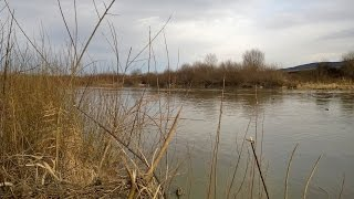 Duck Hunting in Brasov Romania 22 – 24 January 2015