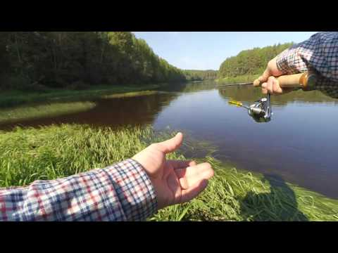 рыбалка в верховьях волги