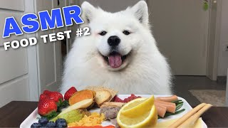 ASMR Dog Reviewing Different Types of Food #2 I MAYASMR
