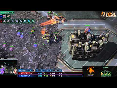 TESL - Fly (Z) vs Top (T) - StarCraft 2 - Season Two Round Robin - G001