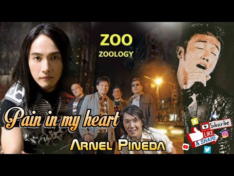 The Zoo - Pain In My Heart