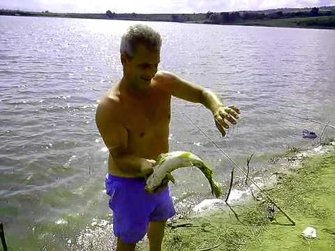 когда есть рыбалка в болгарии