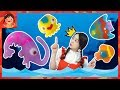 물고기가 살아난다! 신기한 마법물감 아쿠아매직 물속 친구들 워터볼 해양생물 만들기 물감놀이 미술놀이 어린이 장난감 [유라]