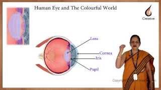 CBSE class 10 physics -  Human Eye and Colourful World