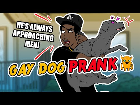 I Think My Dog is Gay - Ownage Pranks