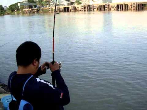 ตกปลากับ โจ้ เจ้าพระยา ตอน สังกะวาดยักษ์ สวายใหญ่