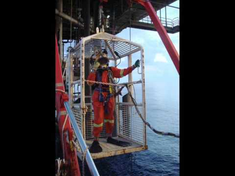 whale shark, commercial diving, oil rig, malaysia
