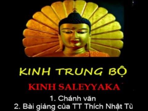 Kinh Trung Bộ - Kinh Saleyyaka. MP3