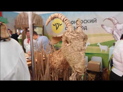 Выставка Пир 2016 Москва crocus-expo PIR