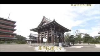 玉名市の観光を紹介する動画