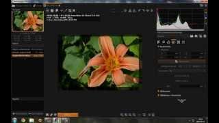 RawTherapee & Photoscape - możliwości