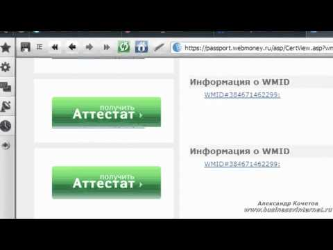 Трастовые сайты  - раскрутка сайта