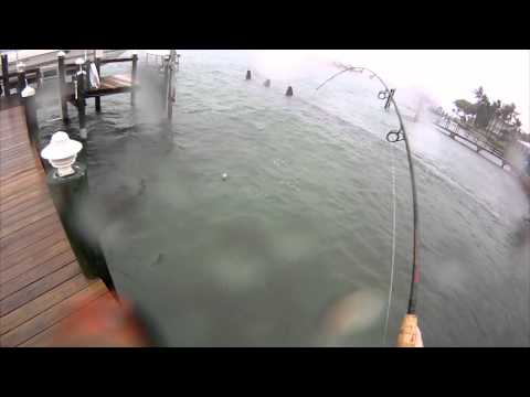 Hurricane Isaac Snook Fishing
