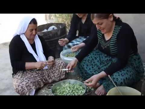 Yazidis  Origin of the Kurds