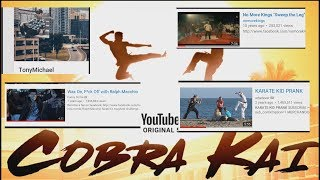Karate Kid & Cobra Kai Fans Should Check This Out