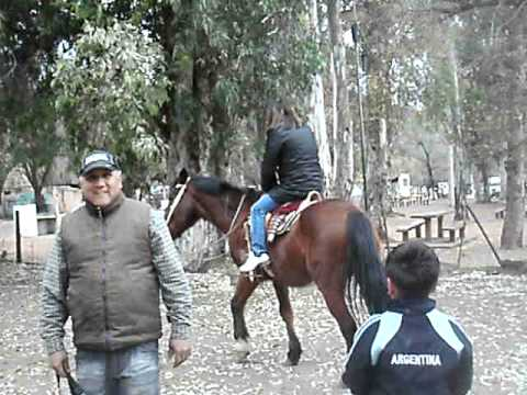 Increible patada de un caballo a un ni�o de 6 a�os