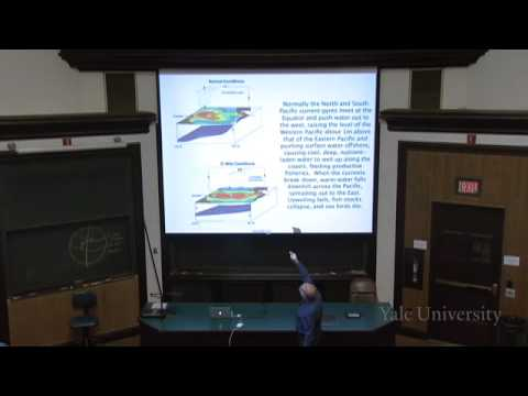 24. Climate and the Distribution of Life on Earth
