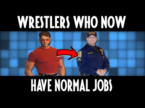 13  Popular Wrestlers Who Now Have Normal Jobs!