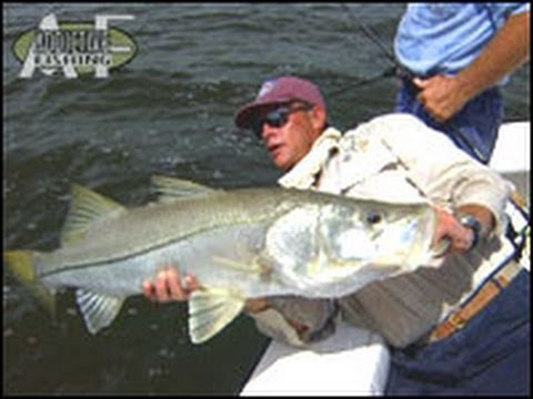 Addictive Fishing: Suburban Style - CANAL TARPON and snook