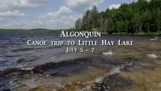 Algonquin Little Hay Lake