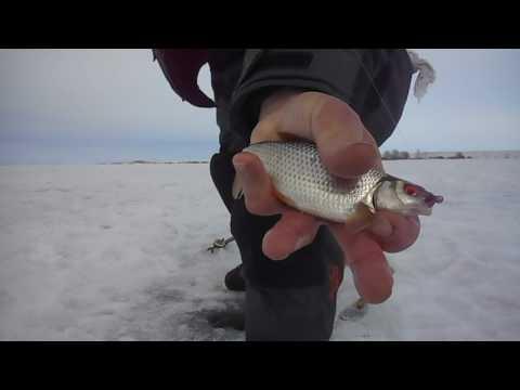 На каких озерах челябинской области ловят карася зимой