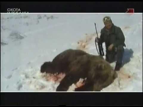 Как приготовить медведя - видео