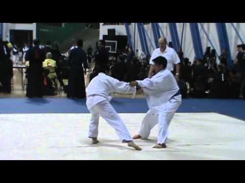 2013 Nikkei Judo tournament