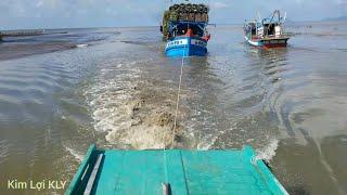 Tàu kéo lại ra khơi kéo tàu mắc cạn.trong khi nước quá ròng.