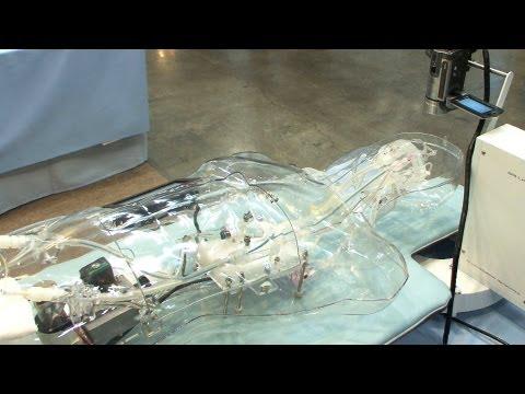 Brain artery model simulates cerebral function #DigInfo