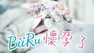 [ BIIRU 與我 ]  BiiRu懷孕了 (ENG SUB)