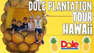 World's Largest Pineapple!!!