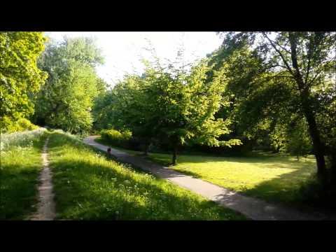 Kurs Dla POCZĄTKUJĄCYCH 1 Dzień=200 Zdań Po Niderlandzku / Wantijpark Dordrecht