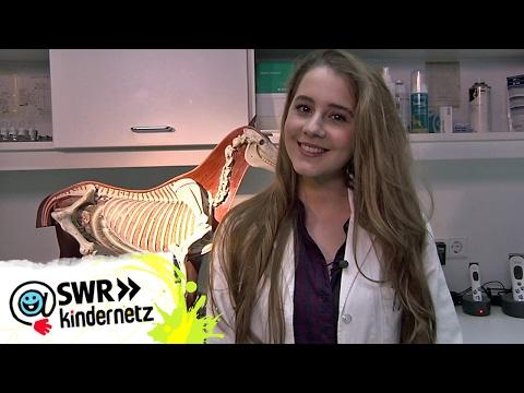 Grüße vom Abschlussdreh der 6. Staffel | Tiere bis unters Dach | SWR Kindernetz