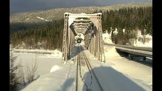 Live View - Train