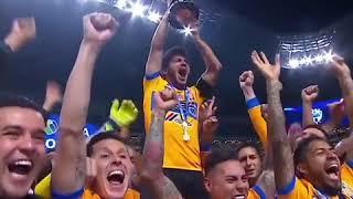 Otra #ProfeciaCumplida #Mexico #TigresCampeon #TorneoApertura Tigres Campeon