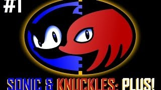 Sonic & Knuckles Plus!  #1: 8 in 1 Japanese (or Chinese?) Bootleg Cartridge