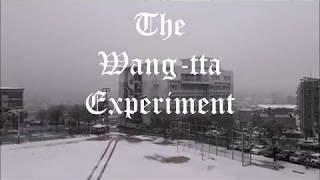 The Wangtta Experiment