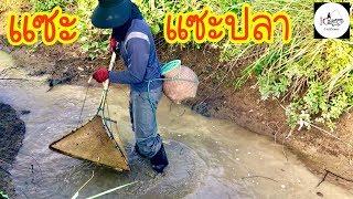 หาปลาด้วยแซะ Fishing lifestyle Ep.89