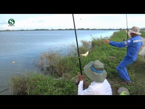 Câu cá cầu Tô Châu   Hồ nước ngọt Ba Hòn Hà Tiên Kiên Giang   Fishing   Câu cá miền tây