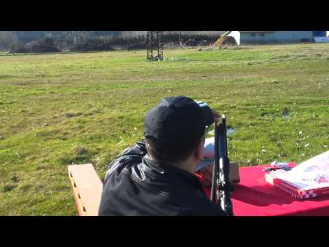 Stoeger X20 Suppressor 55 yard shot 2