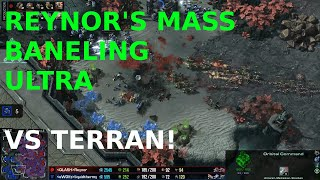 Reynor vs uThermal! TvZ - Starcraft 2