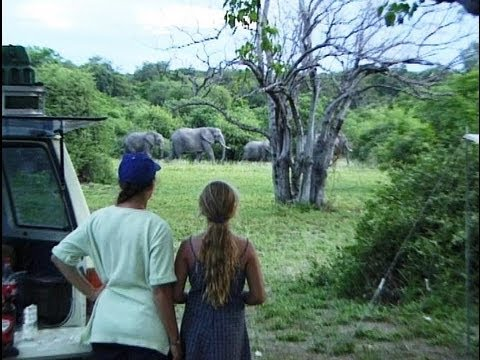 Ihaha, Chobe National Park. Camping in Botswana. Travel guide.
