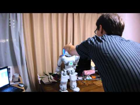 Humanoid Robot Nao Gives a Flower