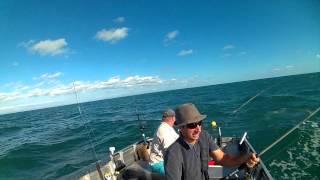 Big fish action in Moreton Bay 2